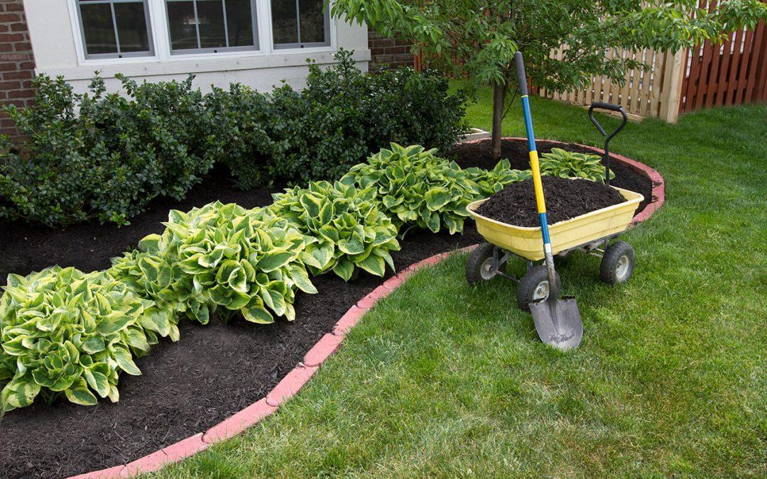 summertime home maintenance includes adding mulch around plants